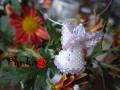 Angyal - a lilás